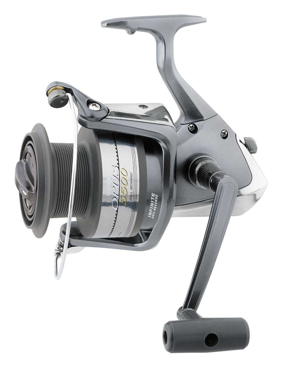 Top 10 Best Saltwater Spinning Reels for the Money